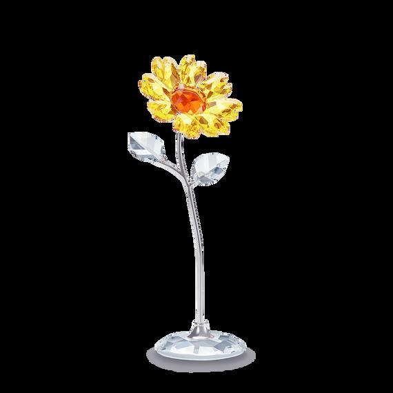 Flower Dreams -  زهرة عباد الشمس